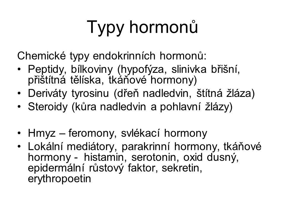 Typy hormonů Chemické typy endokrinních hormonů: Peptidy, bílkoviny (hypofýza, slinivka břišní, přištítná tělíska, tkáňové hormony) Deriváty tyrosinu