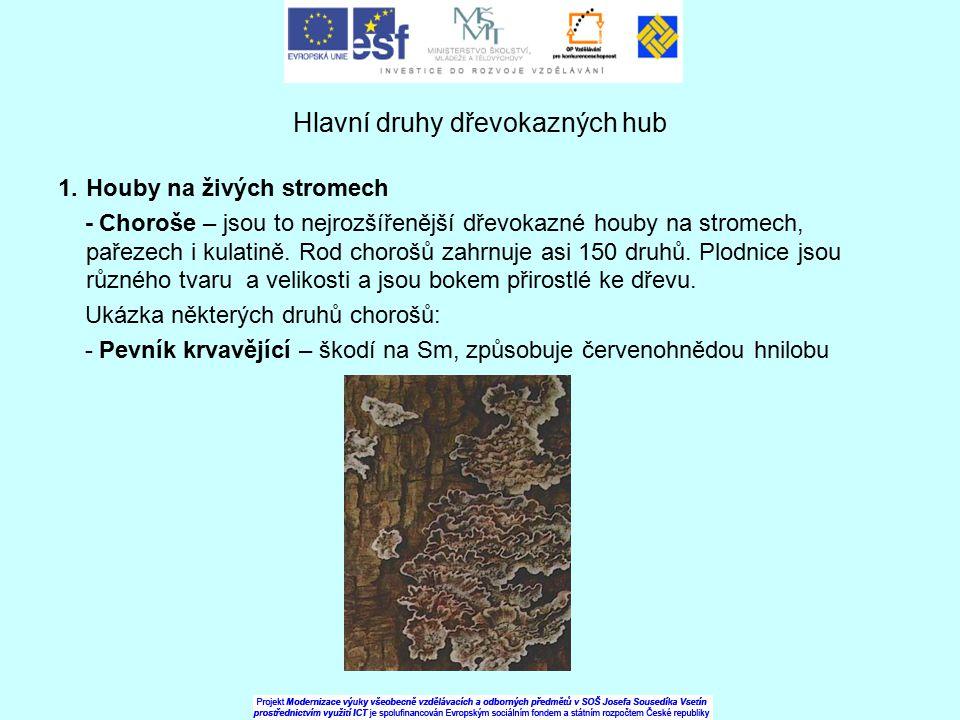 Hlavní druhy dřevokazných hub 1.Houby na živých stromech - Choroše – jsou to nejrozšířenější dřevokazné houby na stromech, pařezech i kulatině. Rod ch