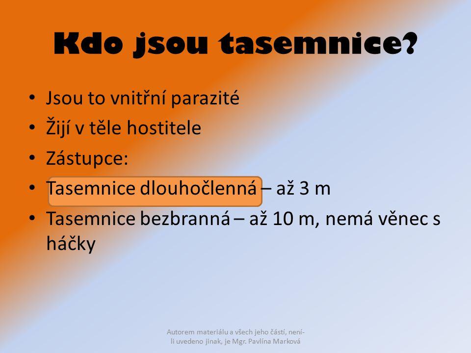 Kdo jsou tasemnice? Jsou to vnitřní parazité Žijí v těle hostitele Zástupce: Tasemnice dlouhočlenná – až 3 m Tasemnice bezbranná – až 10 m, nemá věnec