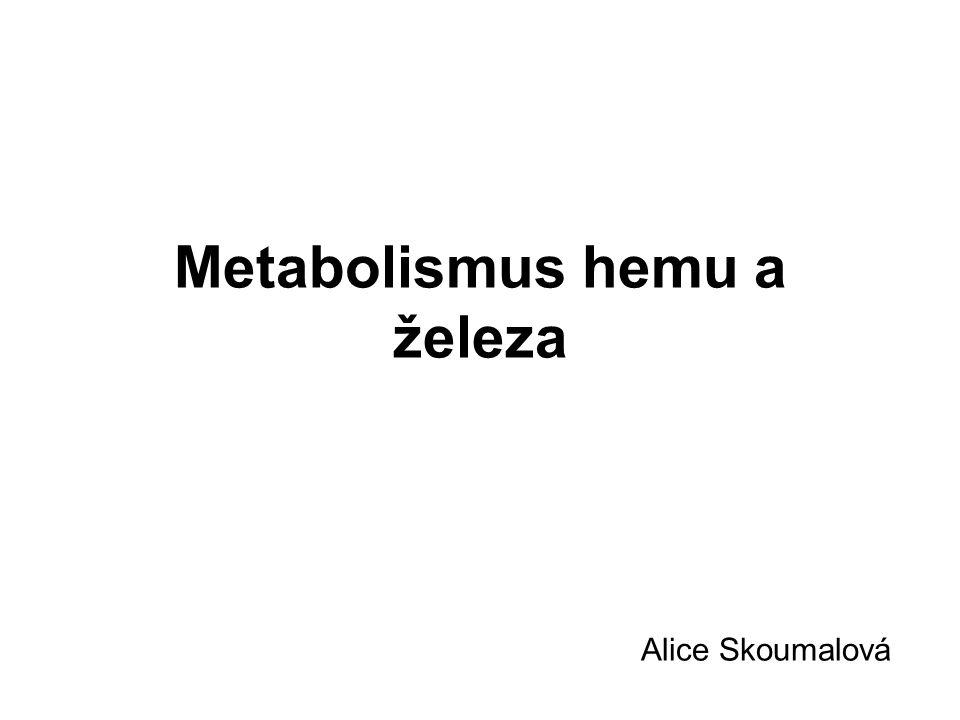 Metabolismus hemu a železa Alice Skoumalová