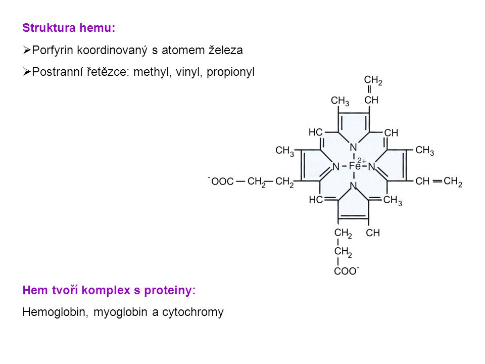 Struktura hemu:  Porfyrin koordinovaný s atomem železa  Postranní řetězce: methyl, vinyl, propionyl Hem tvoří komplex s proteiny: Hemoglobin, myoglo