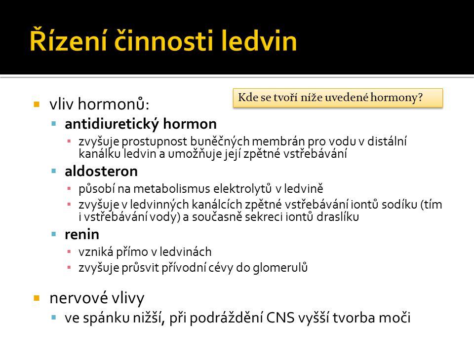  vliv hormonů:  antidiuretický hormon ▪ zvyšuje prostupnost buněčných membrán pro vodu v distální kanálku ledvin a umožňuje její zpětné vstřebávání