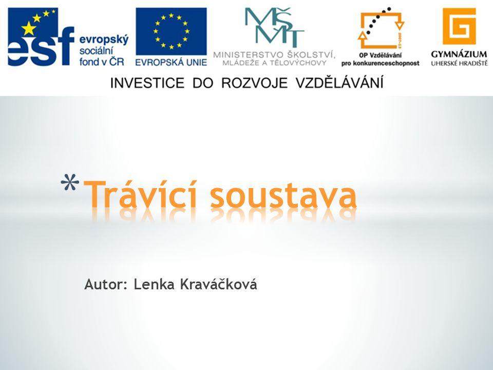 Autor: Lenka Kraváčková