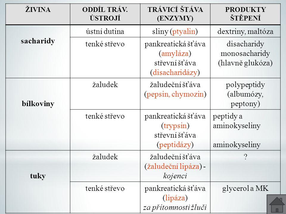 ŽIVINAODDÍL TRÁV. ÚSTROJÍ TRÁVICÍ ŠTÁVA (ENZYMY) PRODUKTY ŠTĚPENÍ sacharidy ústní dutinasliny (ptyalin)dextriny, maltóza tenké střevopankreatická šťáv