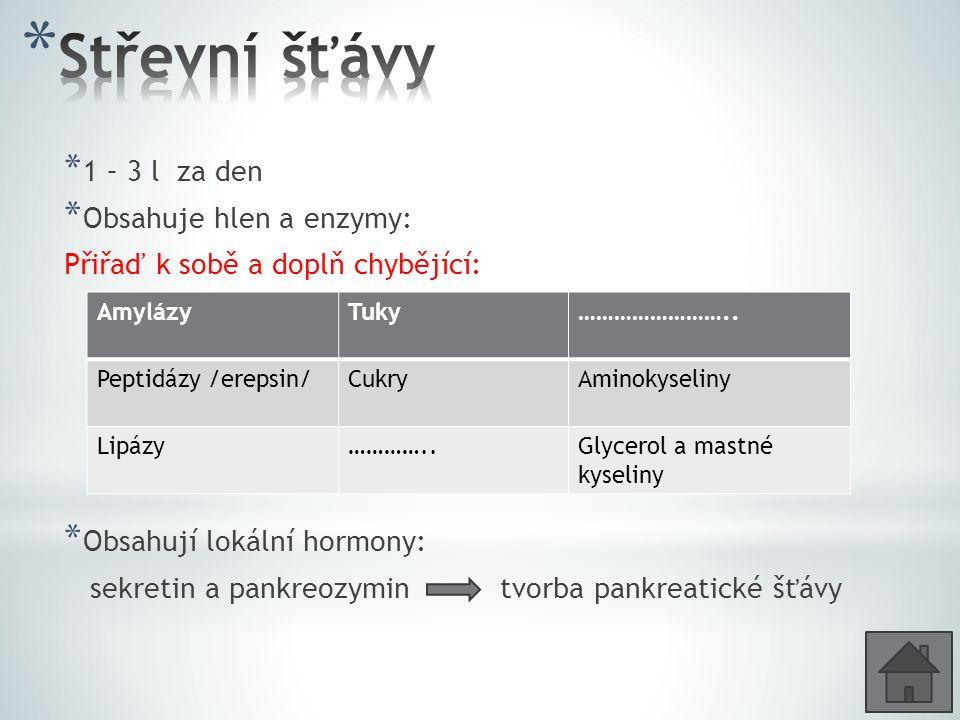 * 14 – 18 cm dlouhá žlázy * Tvorba pankreatické šťávy : enzymy – amylázy, peptidázy /trypsin/, lipázy Této žláze se někdy říká, že je smíšená.