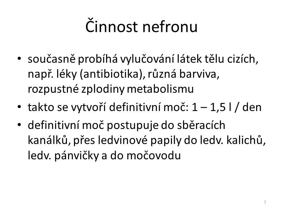 Činnost nefronu současně probíhá vylučování látek tělu cizích, např. léky (antibiotika), různá barviva, rozpustné zplodiny metabolismu takto se vytvoř