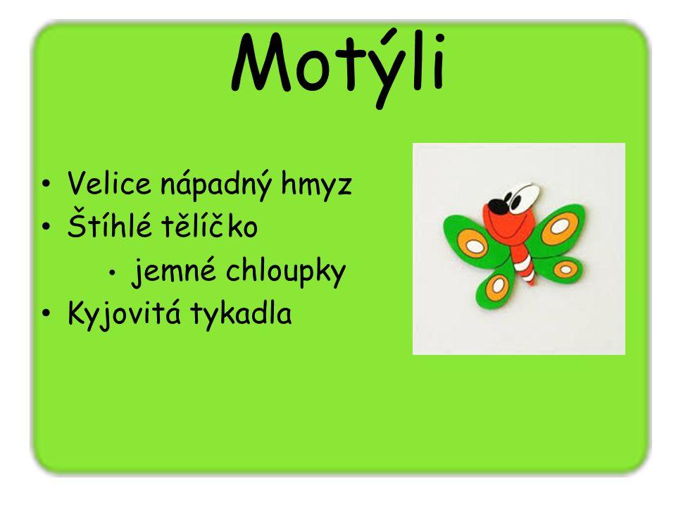 Motýli Hlava + hruď + zadeček Známých 180 000 motýlů Denní (20 000 druhů) Noční – můry (145 000 druhů) Změna dokonalá (přes larvu) Většinou býložravci