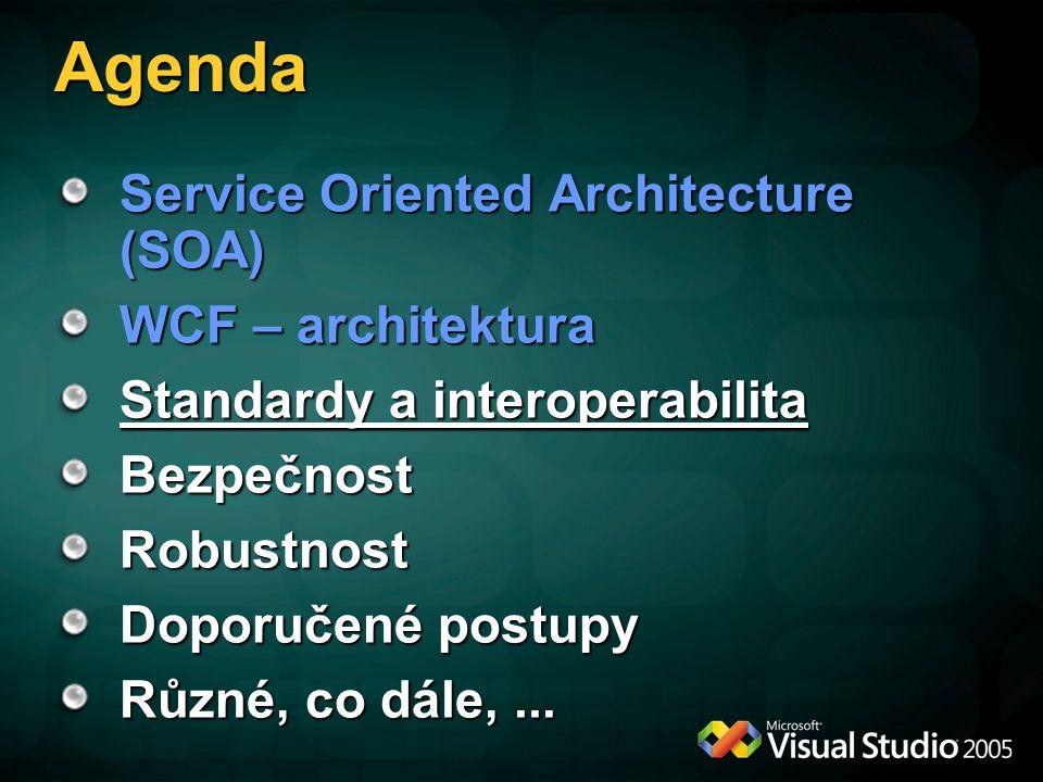 Principy návrhu WS-* Obecnost Žádná vazba na specifickou oblast aplikací Standardizace Podpora klíčových SW výrobců Federativnost Žádný centrální bod pro kontrolu, administraci nebo selhání celku Modularita Jednotlivé standardy mohou fungovat odděleně nebo v libovolné kombinaci Základem jsou metadata/politika