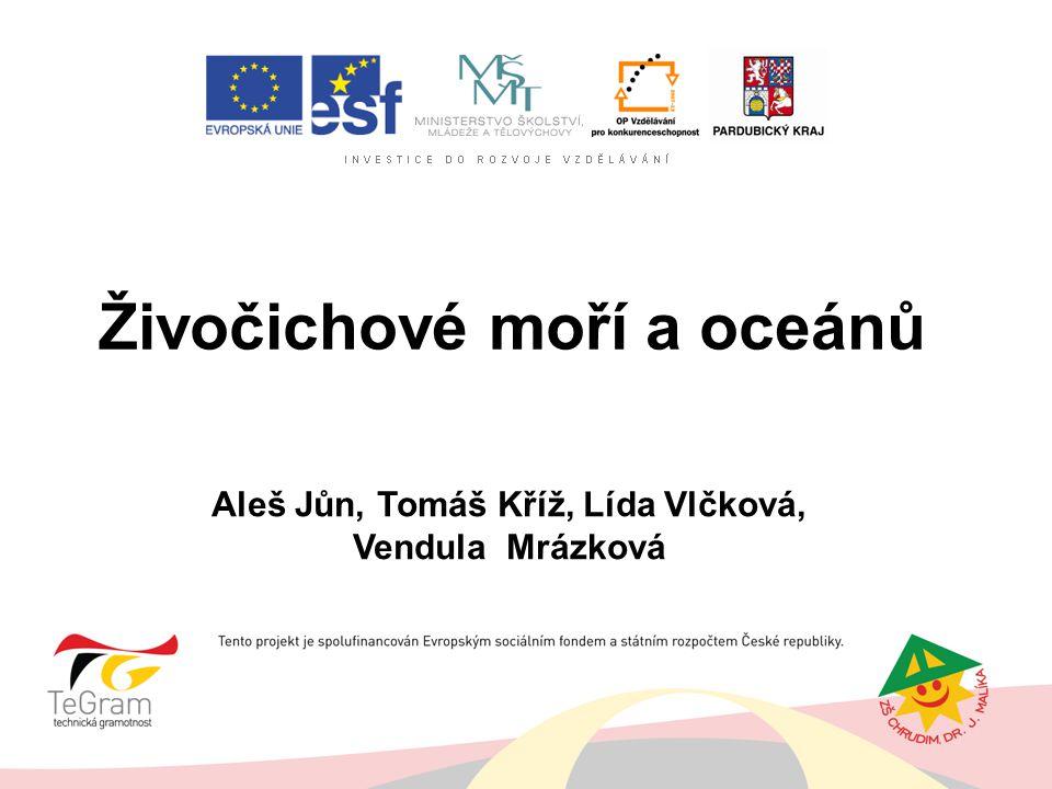 Živočichové moří a oceánů Aleš Jůn, Tomáš Kříž, Lída Vlčková, Vendula Mrázková