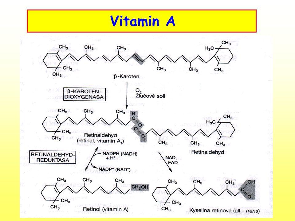 Kyselina pantothenová –Vitamin B 5 Biosyntéza koenzymu A, který vstupuje do citrátového cyklu Výskyt ve fortifikovaných potravinách : Pantothenan vápenatý Panthenol Zdroje: prakticky ve všech potravinách rostlinného a živočišného původu v relativně malém množství Hypovitaminóza – změny metabolismu cukrů, změny reprodukce, poruchy imunitní odpovědi organismu, gastrointertinální potíže Hypervitaminóza – méně častá, průjem Denní dávka – 3 – 10 mg