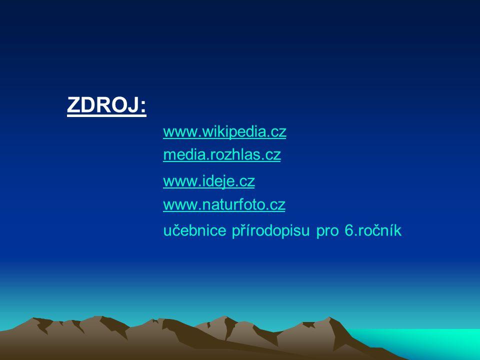 ZDROJ: www.wikipedia.cz media.rozhlas.cz www.ideje.cz www.naturfoto.cz učebnice přírodopisu pro 6.ročník