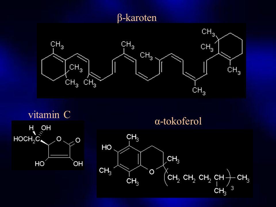 STUDIE VITAMINY, © 2003 T.Roušar LIPOFILNÍ HYDROFILNÍ VITAMIN A VITAMIN C TOKOFEROLY (α,β,γ) VITAMINY Sk. B VITAMIN K VITAMIN H VITAMINY