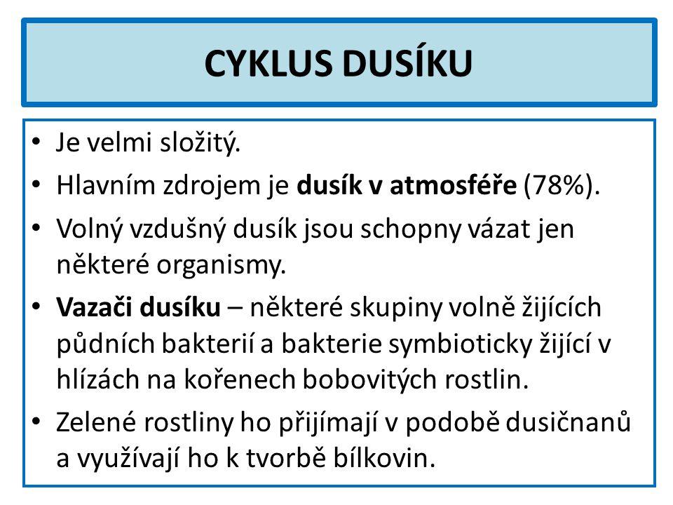 CYKLUS DUSÍKU Je velmi složitý. Hlavním zdrojem je dusík v atmosféře (78%). Volný vzdušný dusík jsou schopny vázat jen některé organismy. Vazači dusík