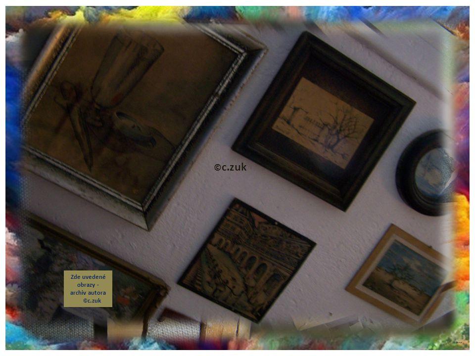 ©c.zuk Archiv autora Napínání plátna do rámu chce své umění a zkušenosti. © c.zuk Zde uvedené obrazy - archiv autora © c.zuk