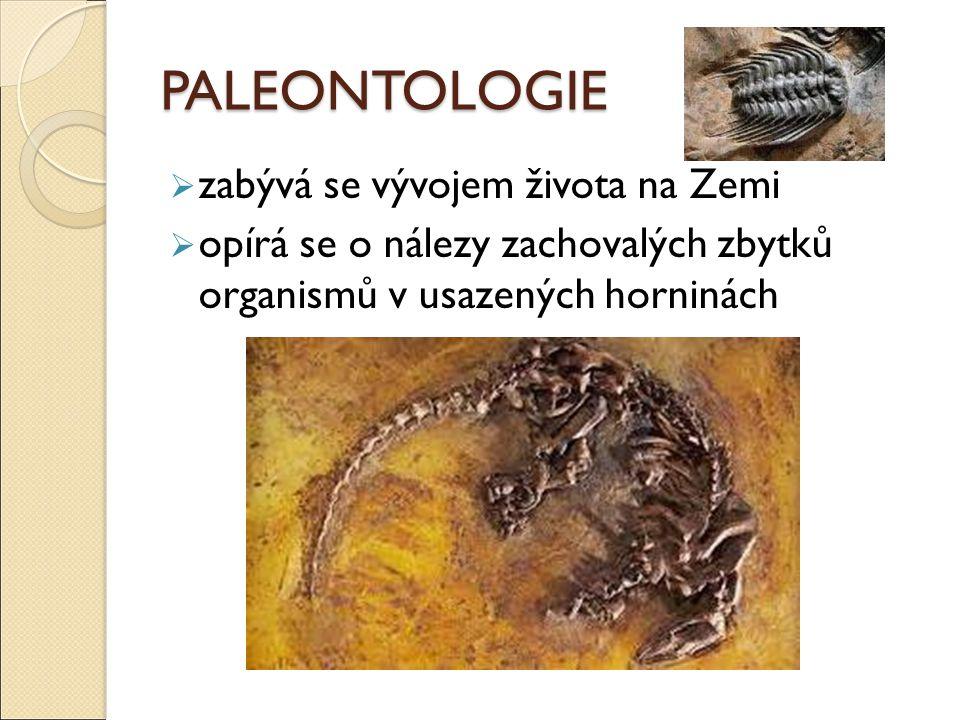 PALEONTOLOGIE  zabývá se vývojem života na Zemi  opírá se o nálezy zachovalých zbytků organismů v usazených horninách