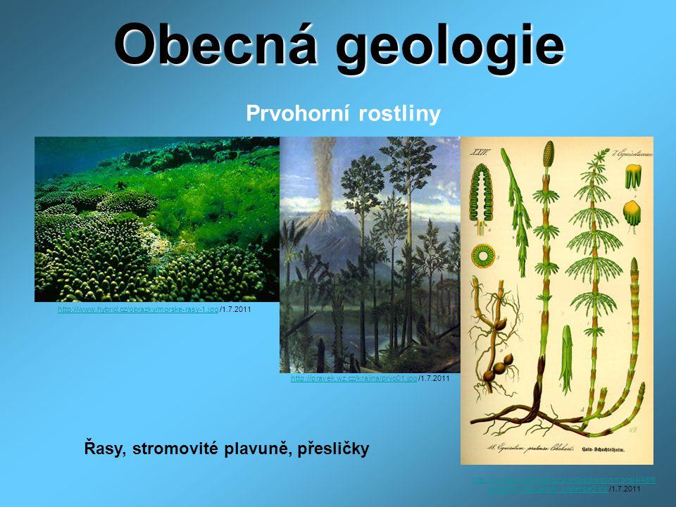 Obecná geologie Prvohorní rostliny http://www.hybrid.cz/obrazky/morske-rasy-1.jpghttp://www.hybrid.cz/obrazky/morske-rasy-1.jpg /1.7.2011 http://prave