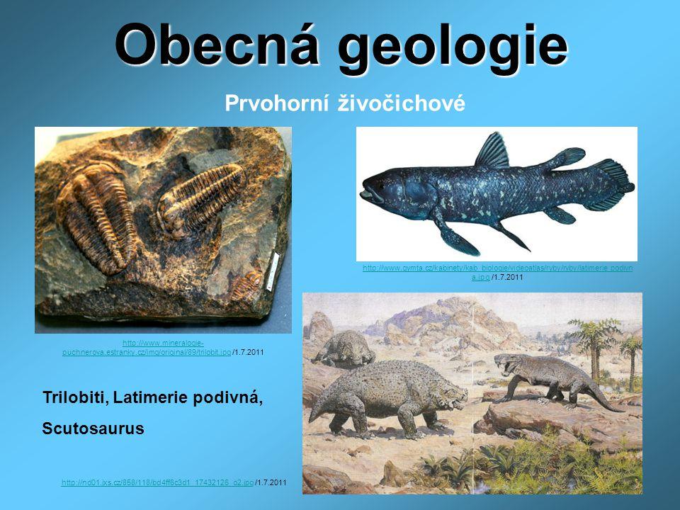Obecná geologie Prvohorní živočichové http://www.mineralogie- puchnerova.estranky.cz/img/original/89/trilobit.jpghttp://www.mineralogie- puchnerova.estranky.cz/img/original/89/trilobit.jpg /1.7.2011 http://www.gymta.cz/kabinety/kab_biologie/videoatlas/ryby/ryby/latimerie_podivn a.jpghttp://www.gymta.cz/kabinety/kab_biologie/videoatlas/ryby/ryby/latimerie_podivn a.jpg /1.7.2011 http://nd01.jxs.cz/858/118/bd4ff6c3d1_17432126_o2.jpghttp://nd01.jxs.cz/858/118/bd4ff6c3d1_17432126_o2.jpg /1.7.2011 Trilobiti, Latimerie podivná, Scutosaurus