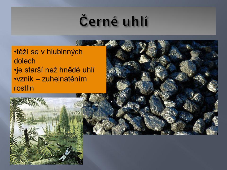 těží se v hlubinných dolech je starší než hnědé uhlí vznik – zuhelnatěním rostlin