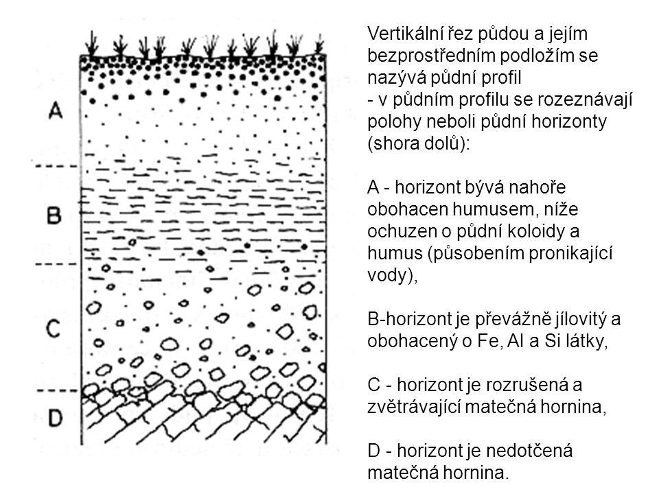 Vertikální řez půdou a jejím bezprostředním podložím se nazývá půdní profil - v půdním profilu se rozeznávají polohy neboli půdní horizonty (shora dolů): A - horizont bývá nahoře obohacen humusem, níže ochuzen o půdní koloidy a humus (působením pronikající vody), B-horizont je převážně jílovitý a obohacený o Fe, Al a Si látky, C - horizont je rozrušená a zvětrávající matečná hornina, D - horizont je nedotčená matečná hornina.