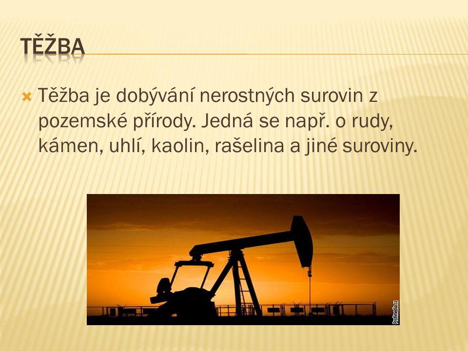  Těžba je dobývání nerostných surovin z pozemské přírody. Jedná se např. o rudy, kámen, uhlí, kaolin, rašelina a jiné suroviny.