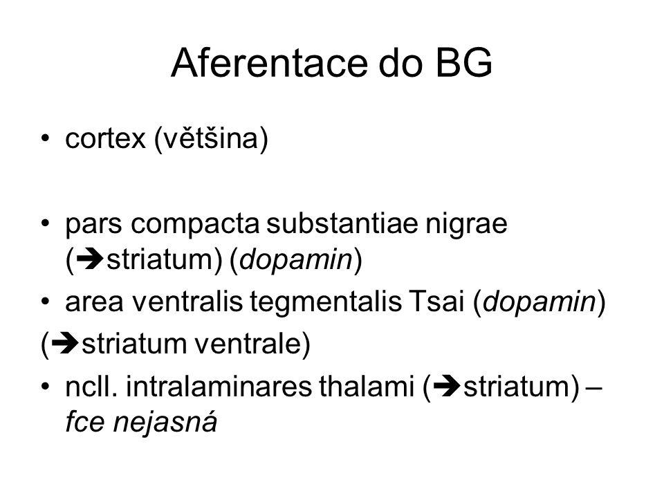Aferentace do BG cortex (většina) pars compacta substantiae nigrae (  striatum) (dopamin) area ventralis tegmentalis Tsai (dopamin) (  striatum vent