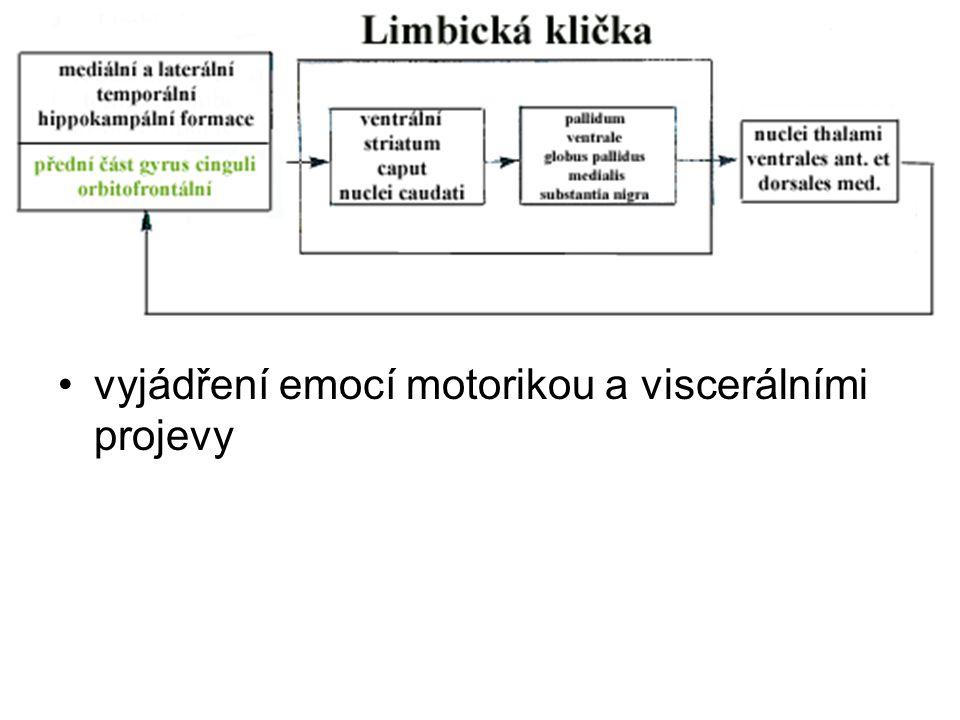 vyjádření emocí motorikou a viscerálními projevy