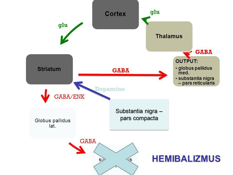 Cortex Striatum Globus pallidus lat. ncl. subthalamicus Luysi OUTPUT: globus pallidus med. substantia nigra – pars reticularis Thalamus GABA/ENK glu G