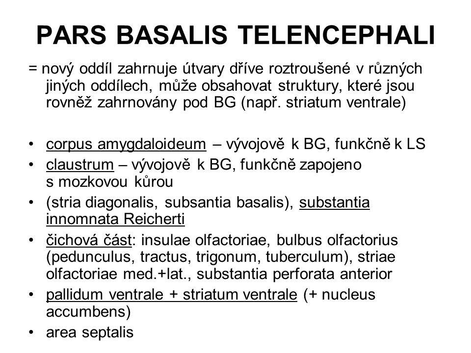 PARS BASALIS TELENCEPHALI = nový oddíl zahrnuje útvary dříve roztroušené v různých jiných oddílech, může obsahovat struktury, které jsou rovněž zahrno
