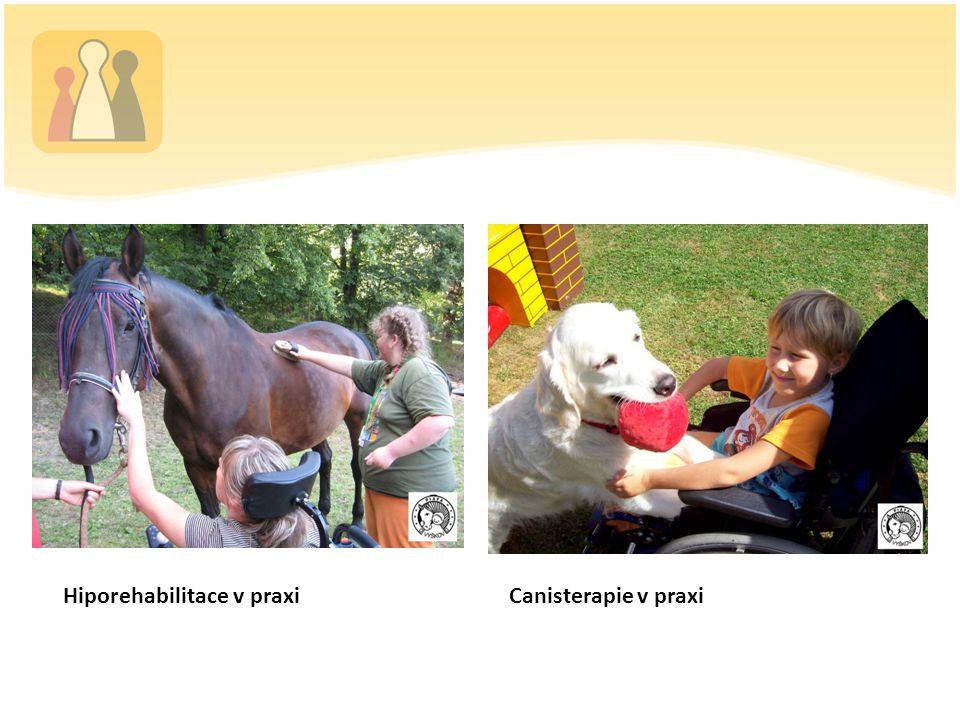 Canisterapie v praxi Hiporehabilitace v praxi