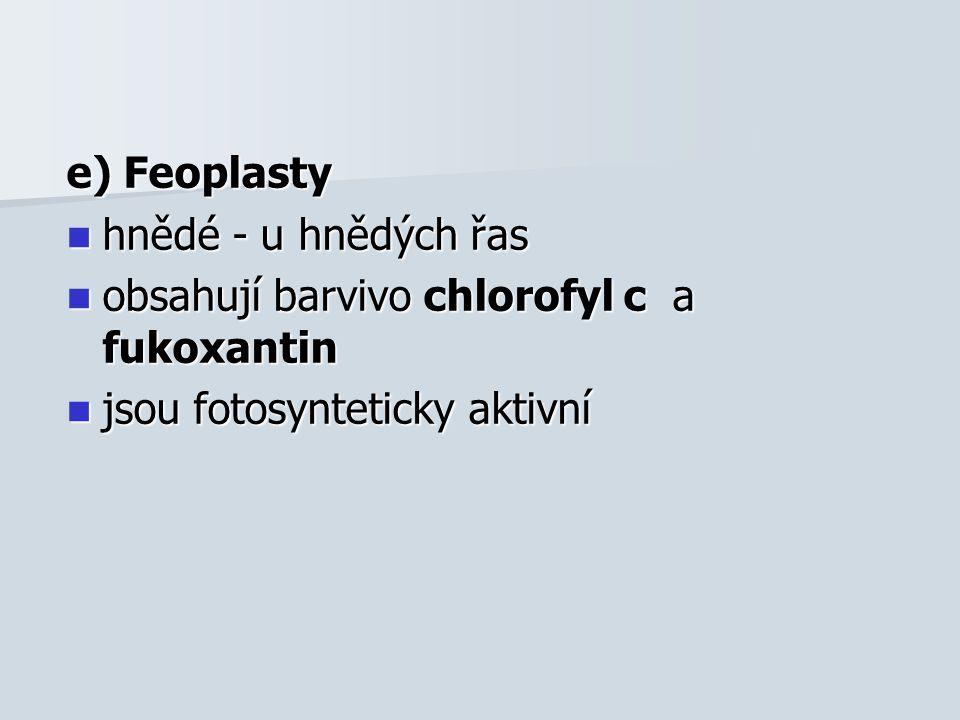 e) Feoplasty hnědé - u hnědých řas hnědé - u hnědých řas obsahují barvivo chlorofyl c a fukoxantin obsahují barvivo chlorofyl c a fukoxantin jsou fotosynteticky aktivní jsou fotosynteticky aktivní