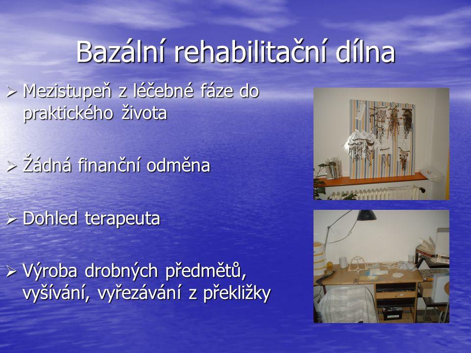 Bazální rehabilitační dílna  Mezistupeň z léčebné fáze do praktického života  Žádná finanční odměna  Dohled terapeuta  Výroba drobných předmětů, vyšívání, vyřezávání z překližky