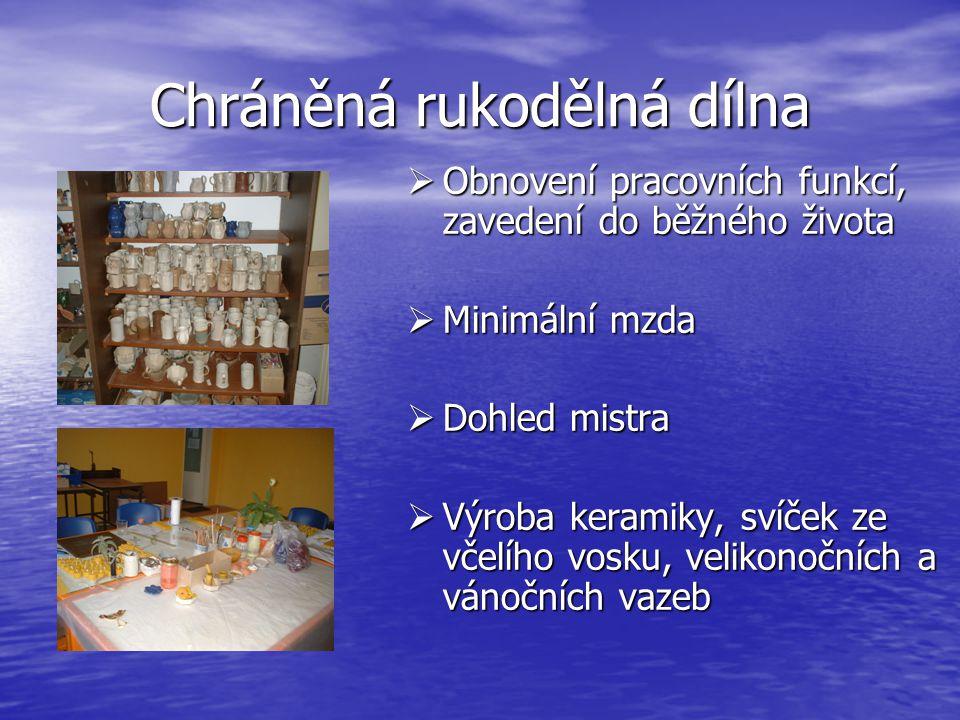 Chráněná rukodělná dílna  Obnovení pracovních funkcí, zavedení do běžného života  Minimální mzda  Dohled mistra  Výroba keramiky, svíček ze včelího vosku, velikonočních a vánočních vazeb
