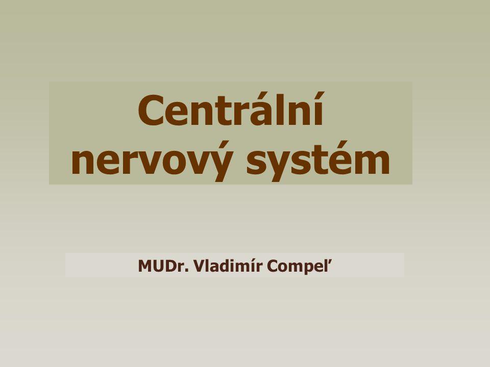Centrální nervový systém MUDr. Vladimír Compeľ