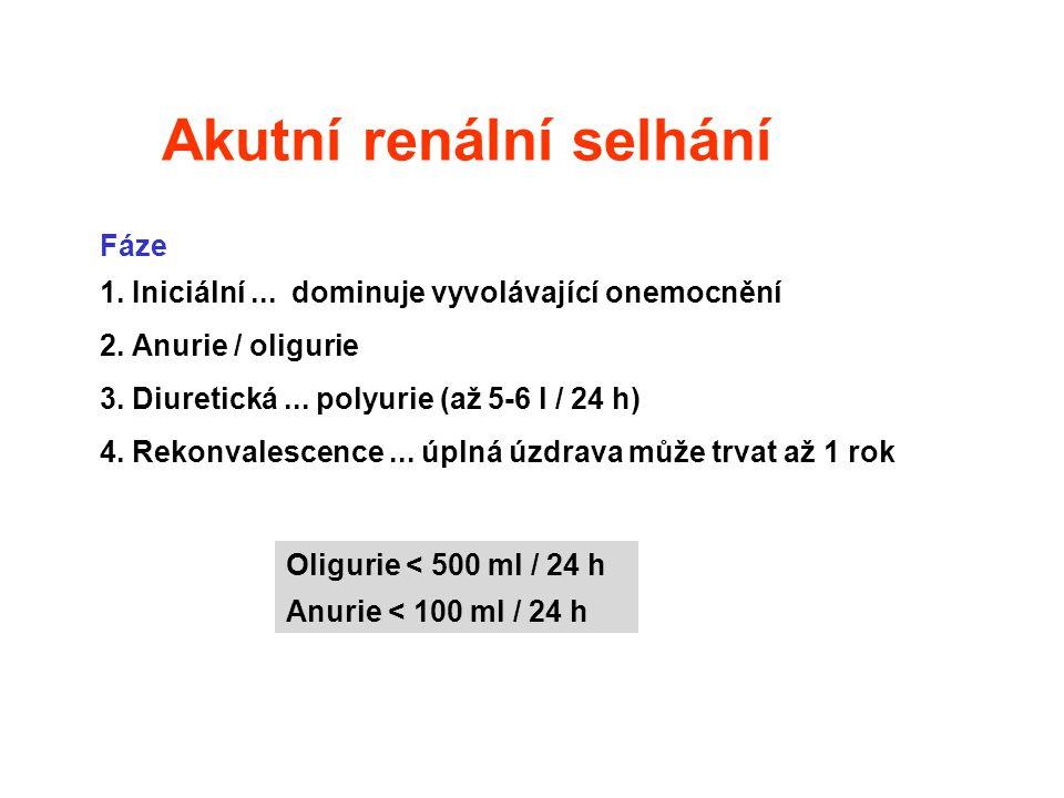 Akutní renální selhání Fáze 1. Iniciální... dominuje vyvolávající onemocnění 2. Anurie / oligurie 3. Diuretická... polyurie (až 5-6 l / 24 h) 4. Rekon