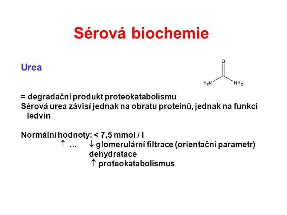 Urea = degradační produkt proteokatabolismu Sérová urea závisí jednak na obratu proteinů, jednak na funkci ledvin Normální hodnoty: < 7,5 mmol / l ..