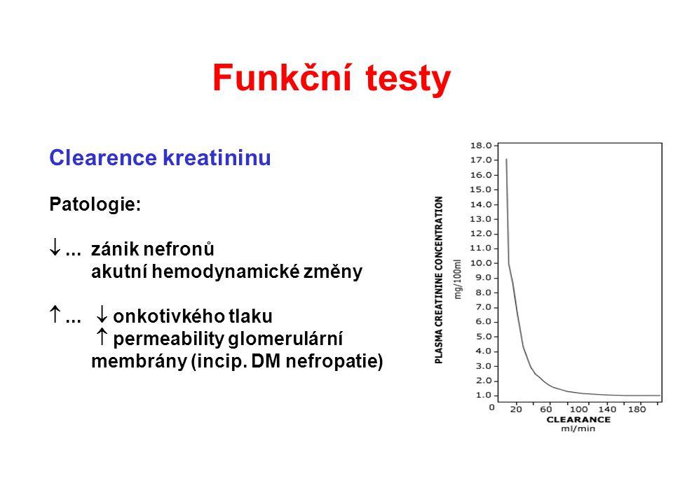 Clearence kreatininu Patologie: ...zánik nefronů akutní hemodynamické změny ...  onkotivkého tlaku  permeability glomerulární membrány (incip. DM
