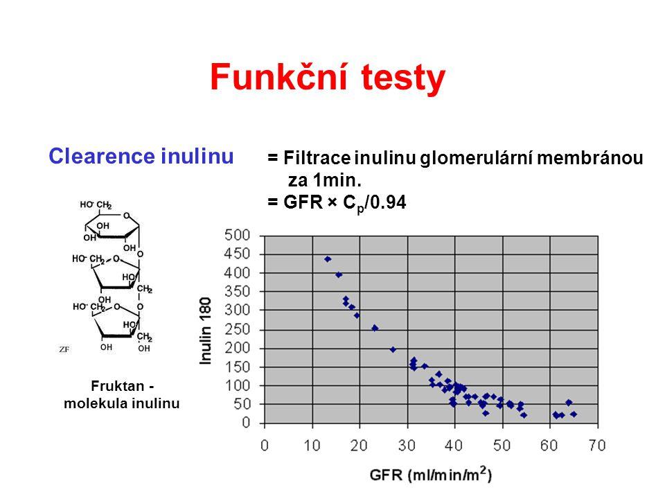 Clearence inulinu Fruktan - molekula inulinu = Filtrace inulinu glomerulární membránou za 1min. = GFR × C p /0.94 Funkční testy