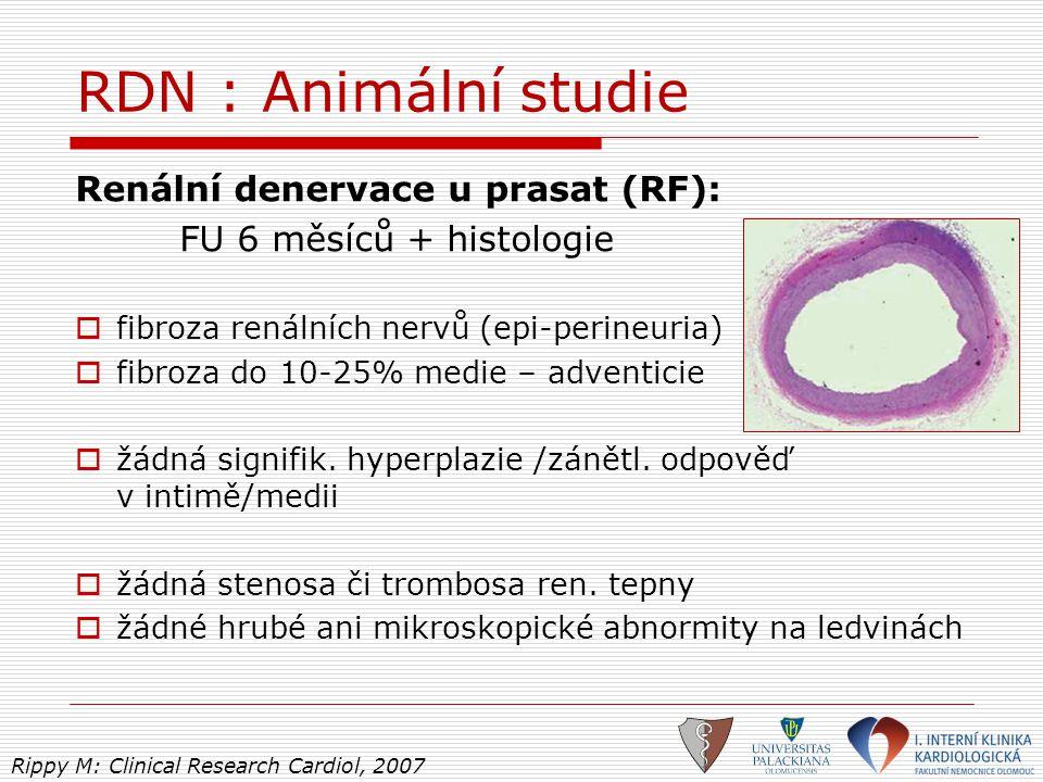 RDN : Animální studie Renální denervace u prasat (RF): FU 6 měsíců + histologie  fibroza renálních nervů (epi-perineuria)  fibroza do 10-25% medie –