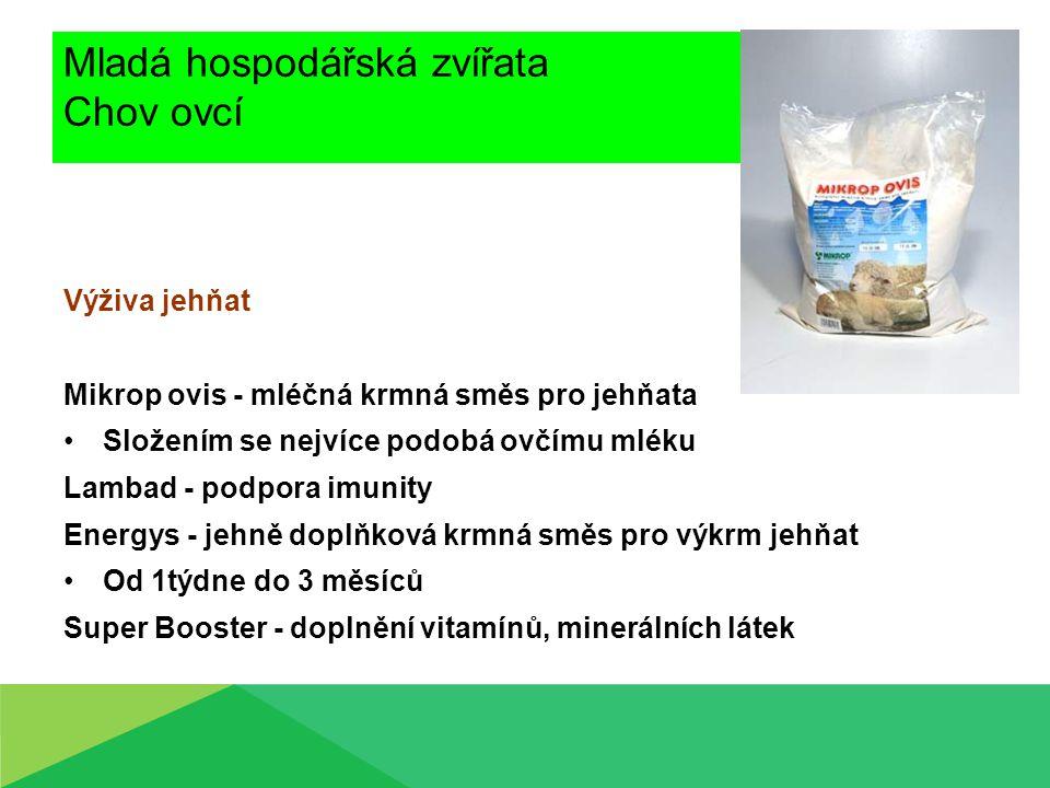 Mladá hospodářská zvířata Chov ovcí Výživa jehňat Mikrop ovis - mléčná krmná směs pro jehňata Složením se nejvíce podobá ovčímu mléku Lambad - podpora