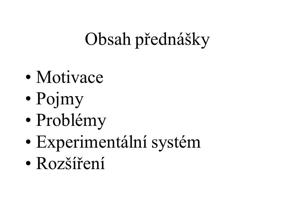 Obsah přednášky Motivace Pojmy Problémy Experimentální systém Rozšíření
