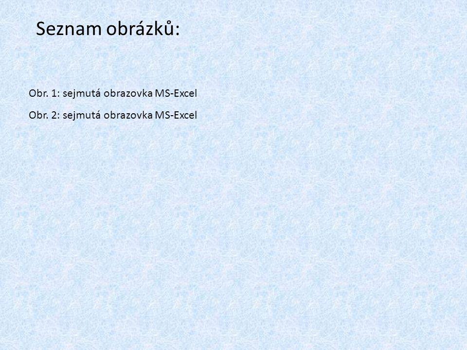 Obr. 1: sejmutá obrazovka MS-Excel Obr. 2: sejmutá obrazovka MS-Excel Seznam obrázků: