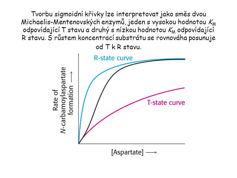 Tvorbu sigmoidní křivky lze interpretovat jako směs dvou Michaelis-Mentenovských enzymů, jeden s vysokou hodnotou K M odpovídající T stavu a druhý s nízkou hodnotou K M odpovídající R stavu.