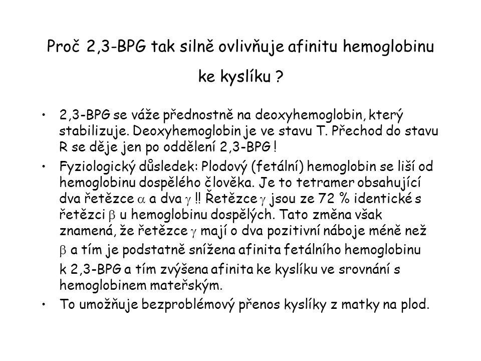 Afinita ke kyslíku u fetálních erythrocytů.