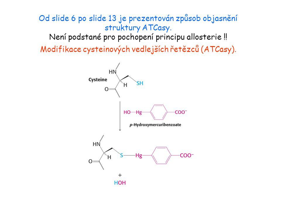 Od slide 6 po slide 13 je prezentován způsob objasnění struktury ATCasy.