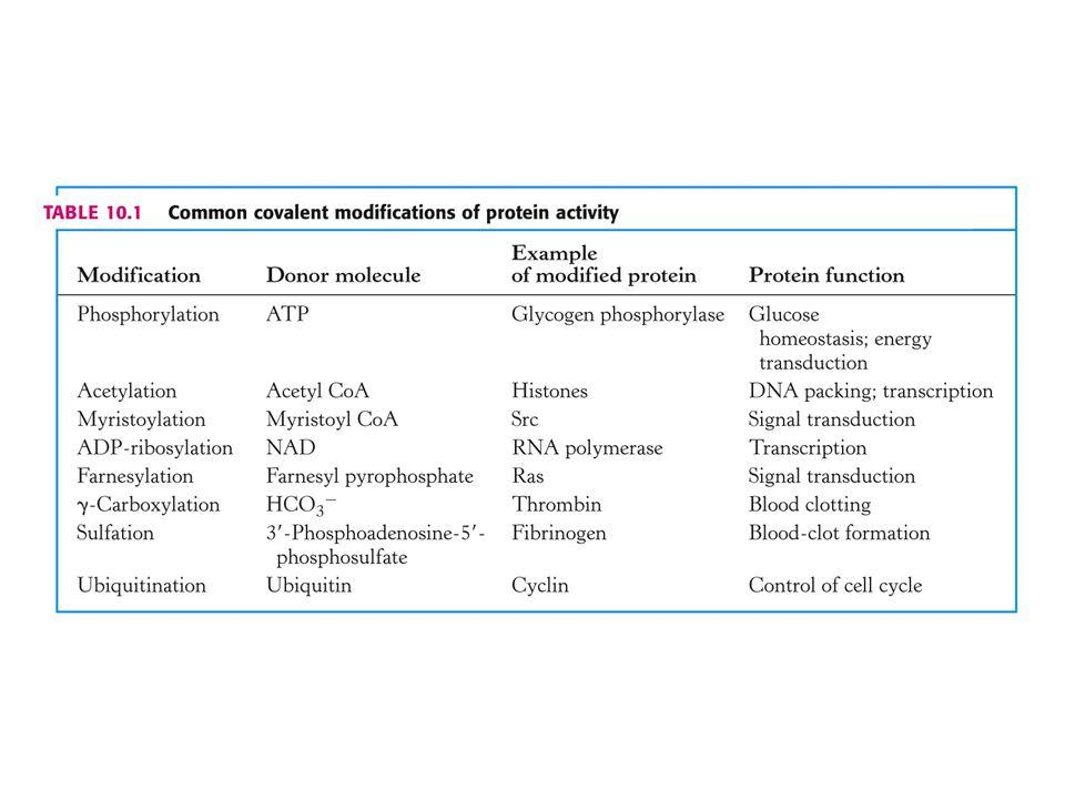 Vysvětlivky k tabulce: Common covalent modification of protein activity Ras = onkogen – rat sarcoma viruses.