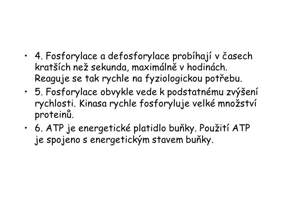 4.Fosforylace a defosforylace probíhají v časech kratších než sekunda, maximálně v hodinách.