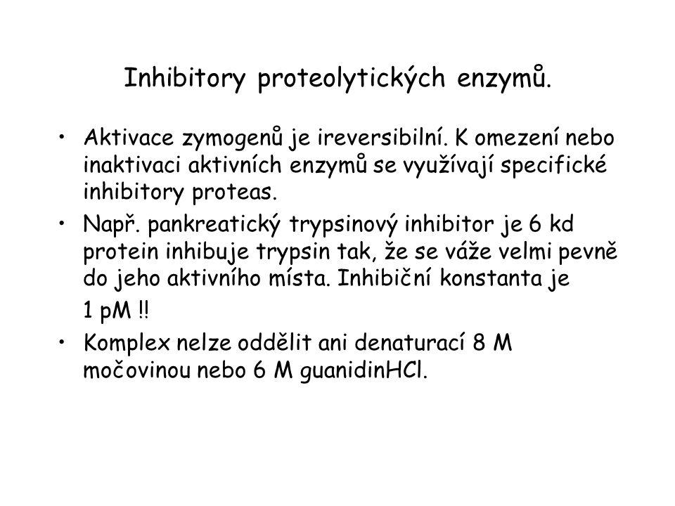 Interakce trypsinu se svým inhibitorem.Trypsin (žlutý), inhibitor (červený).
