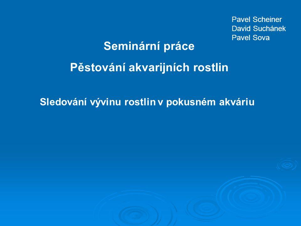 Seminární práce Pěstování akvarijních rostlin Pavel Scheiner David Suchánek Pavel Sova Sledování vývinu rostlin v pokusném akváriu
