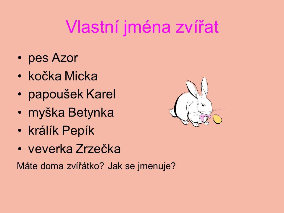 Vlastní jména zvířat pes Azor kočka Micka papoušek Karel myška Betynka králík Pepík veverka Zrzečka Máte doma zvířátko.