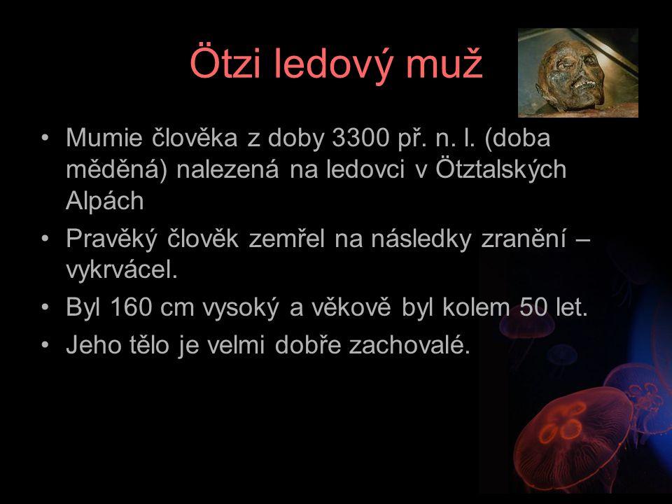 Nález Ötziho Nalezen v r.1991 náhodnými turisti.